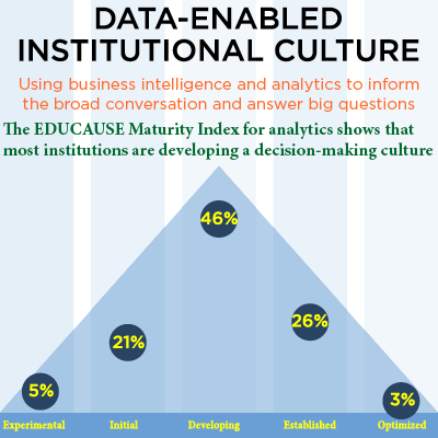 Graphic showing data-enabled culture percentages